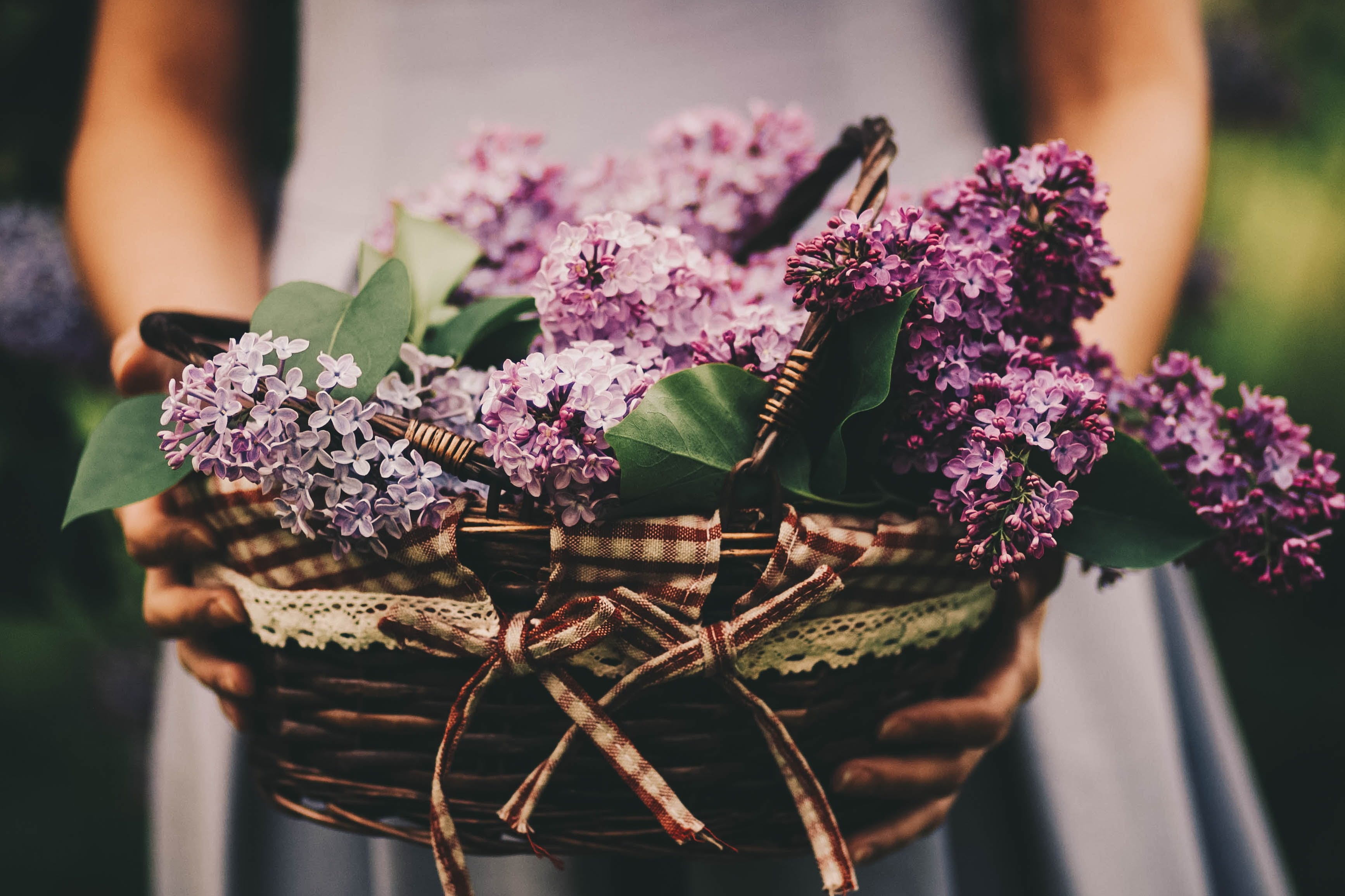 Photo of Woman Holding Basket Of Purple Flowers
