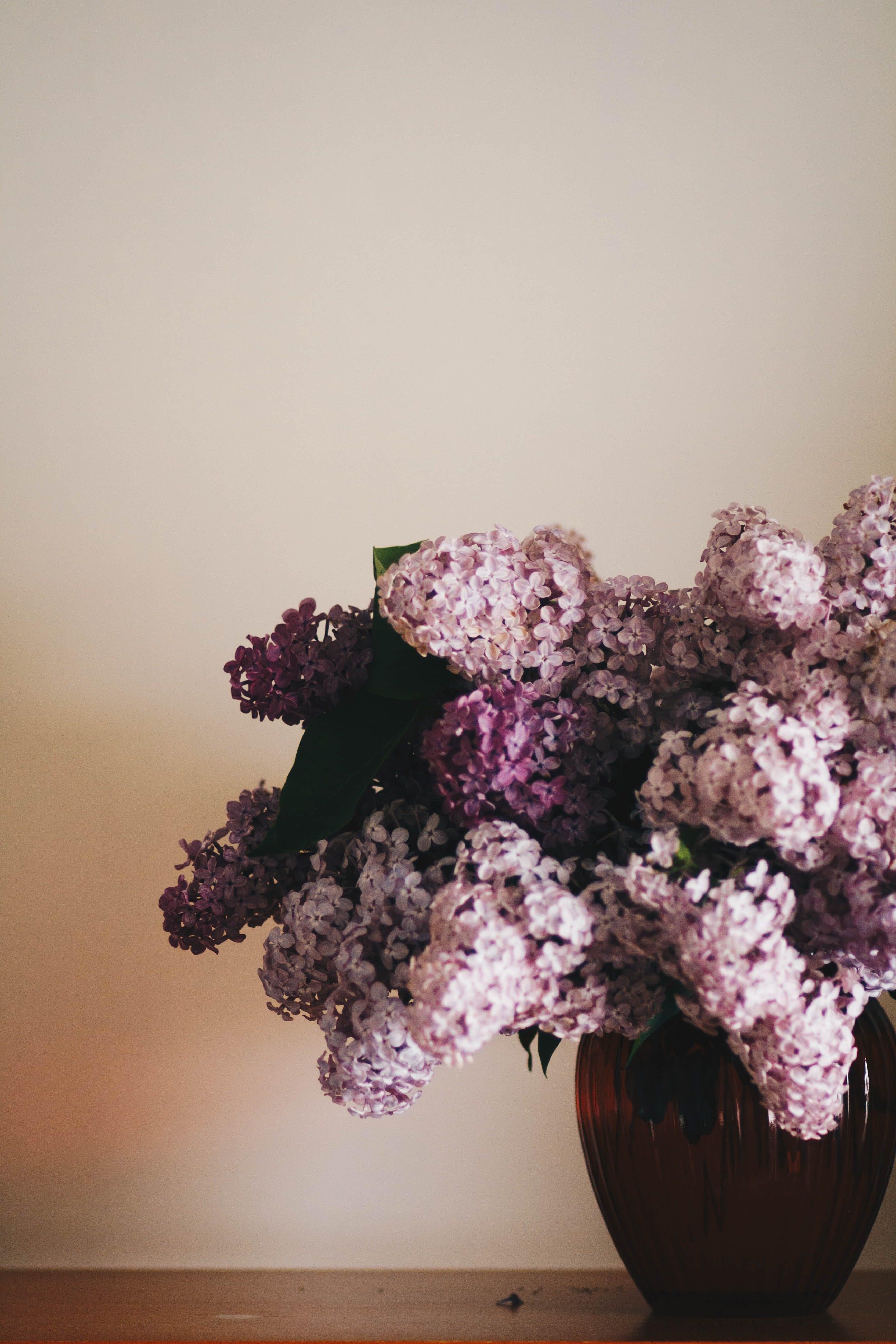 Gratis lagerfoto af blomster, blomsterarrangement, blomsterbuket, blomstervase
