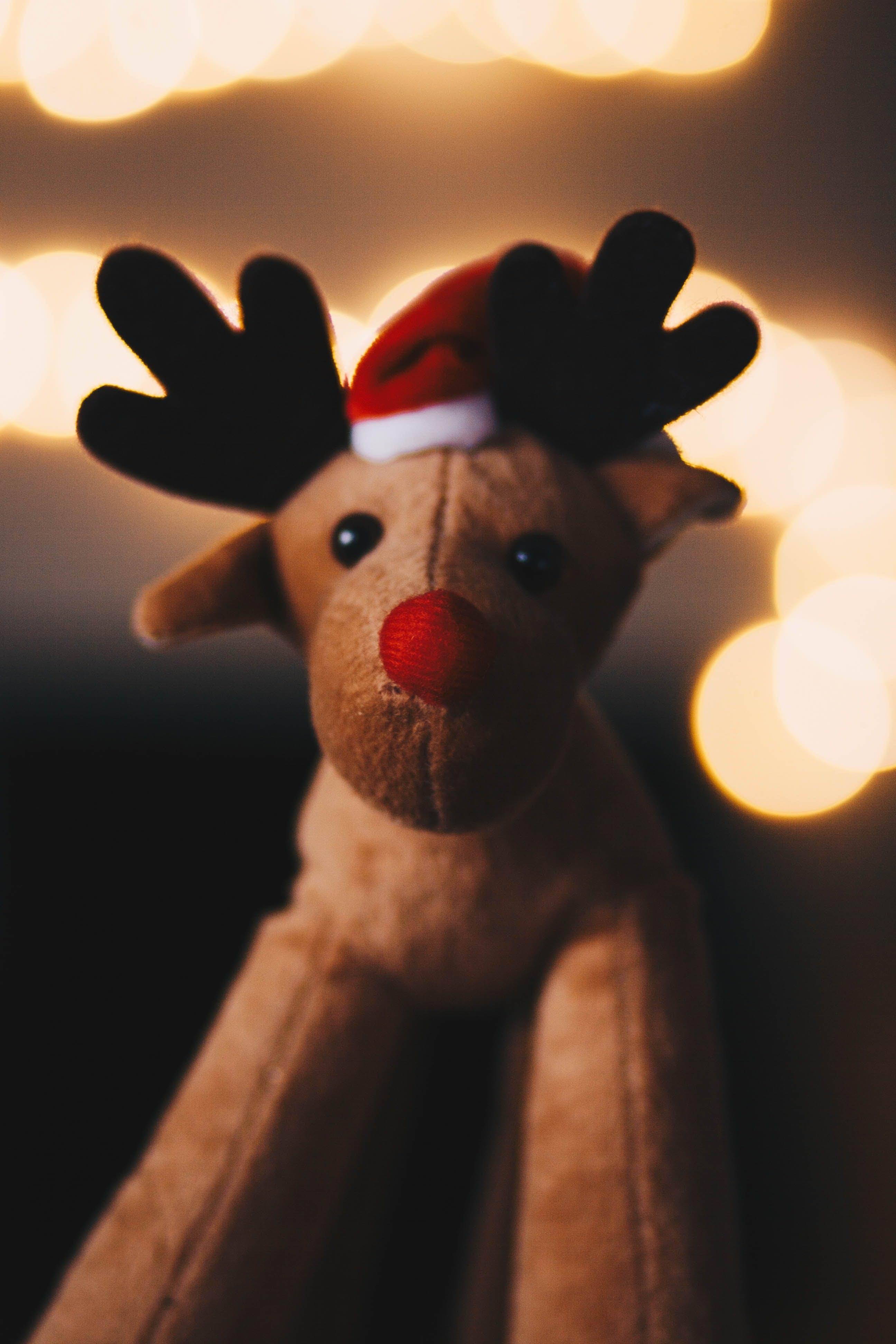 Rudolph Plush Toy