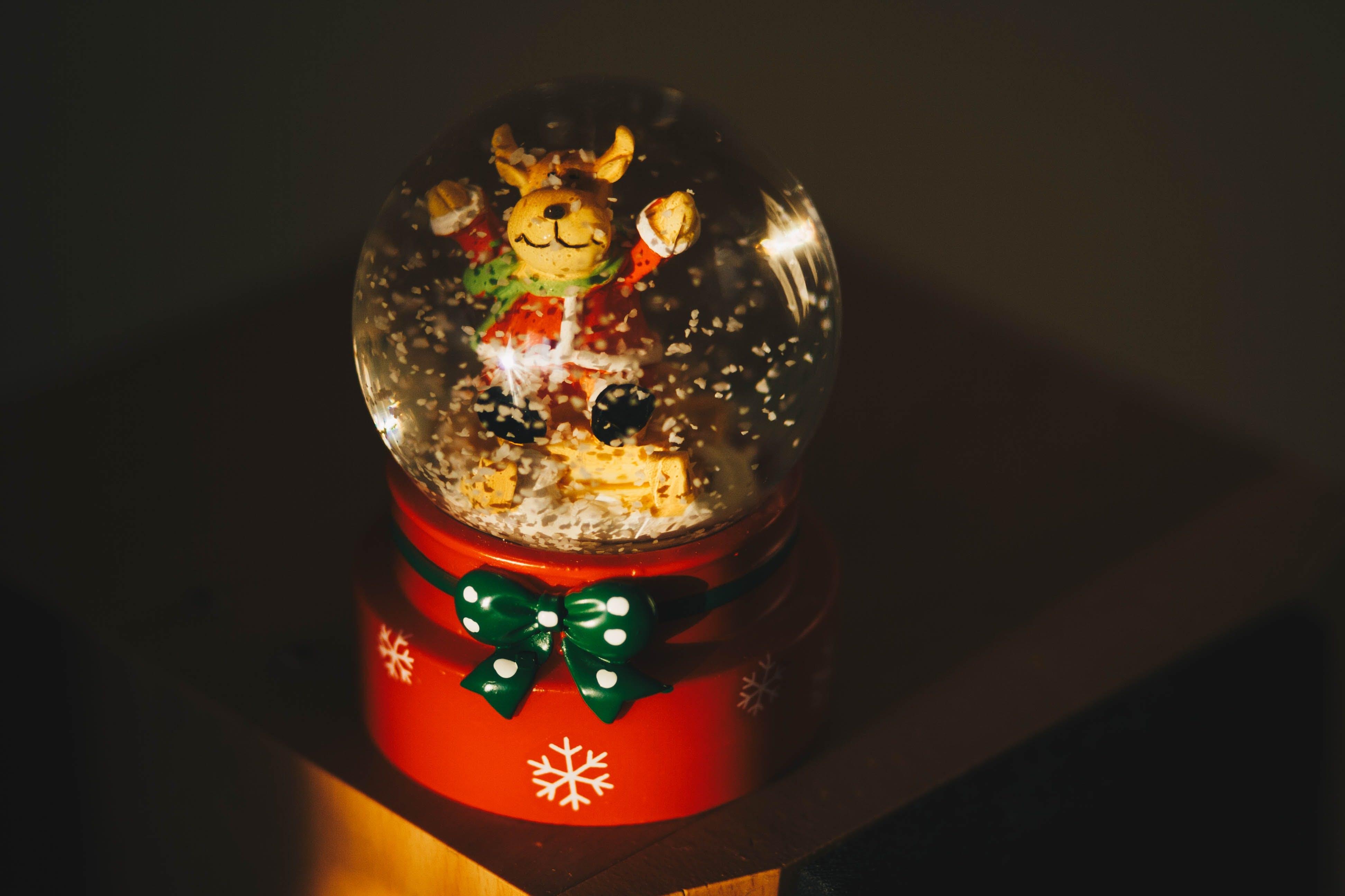 Brown Teddy Bear Christmas Water Gloeb