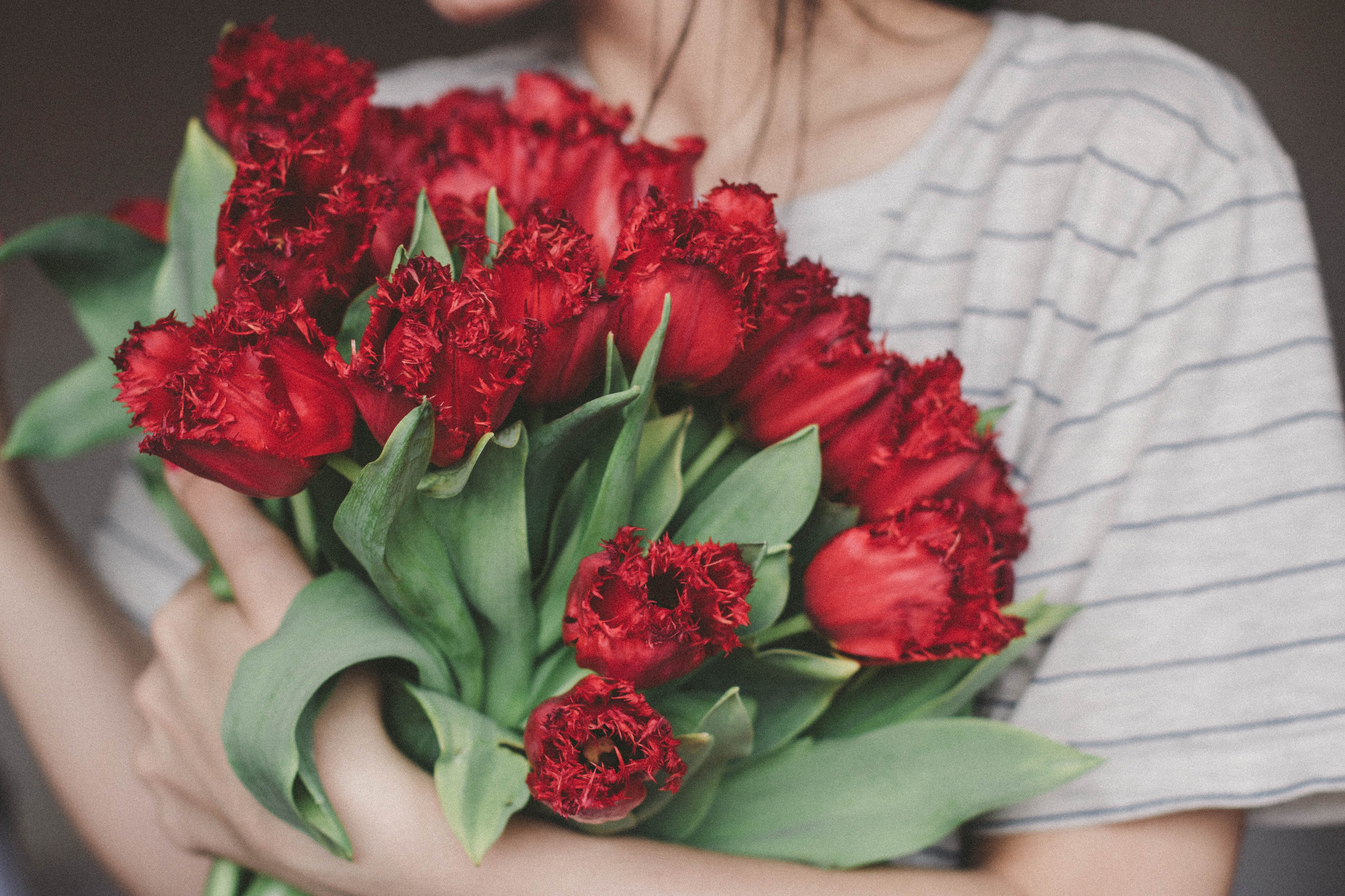 Woman Holding Bouquet of Red Flowers