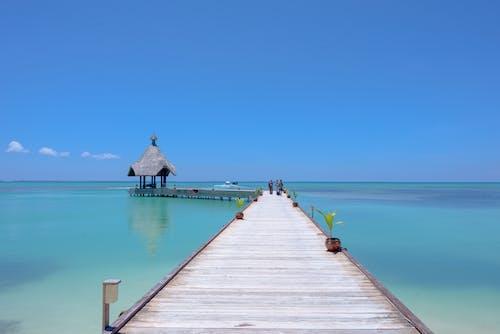Бесплатное стоковое фото с sccenic, вода, дневной свет, досуг