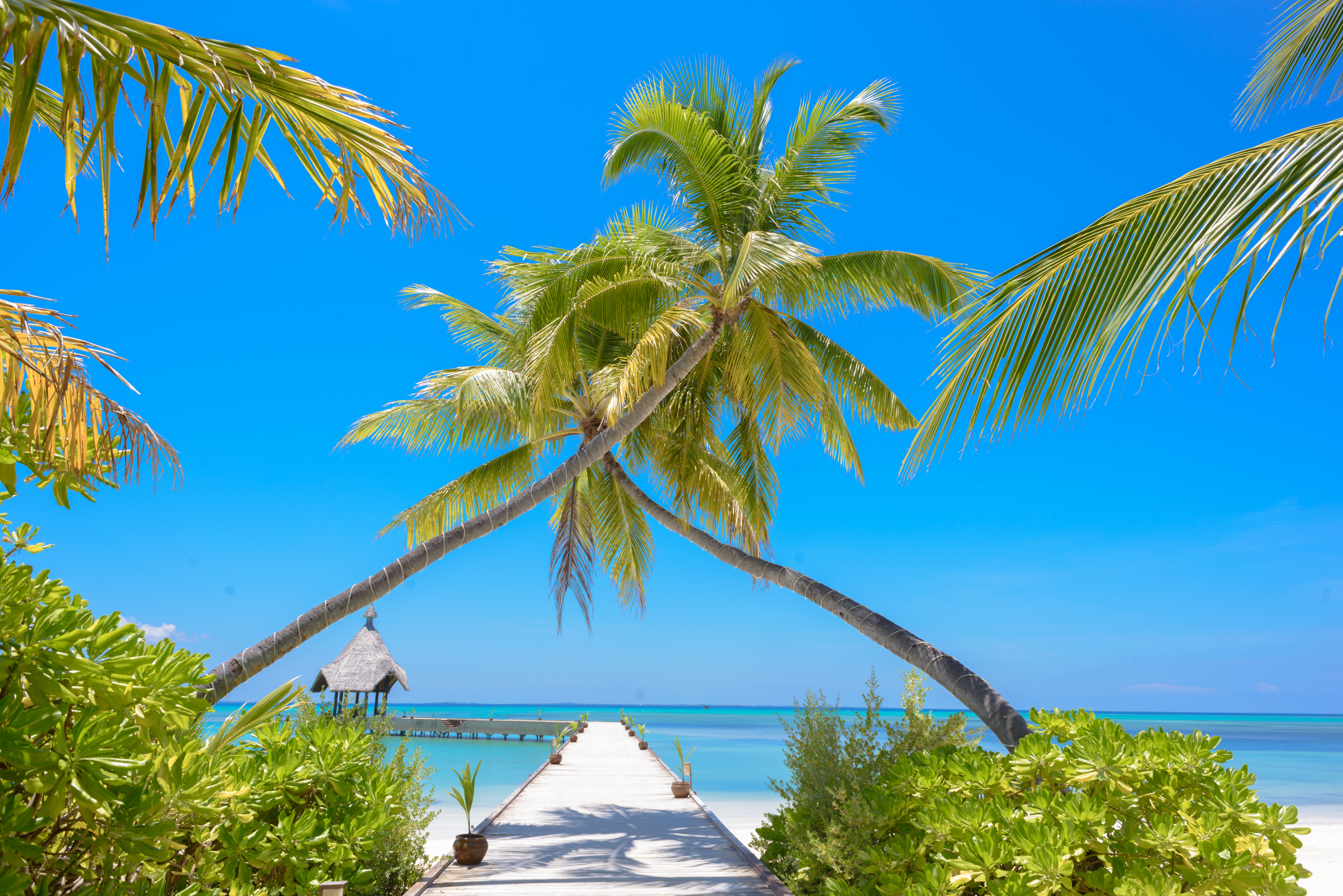 Fotobanka sbezplatnými fotkami na tému exotický, horizont, idylický, krajina pri mori