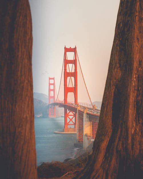 Gratis lagerfoto af architectrure, arkitektur, bro, golden gate bridge