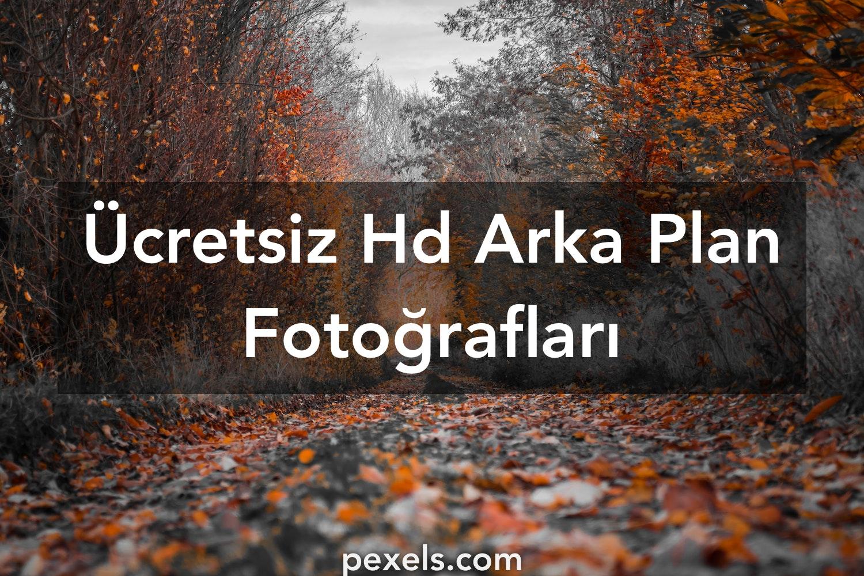 1000 Hd Arka Plan Fotoğraf Pexels ücretsiz Stok Fotoğraflar