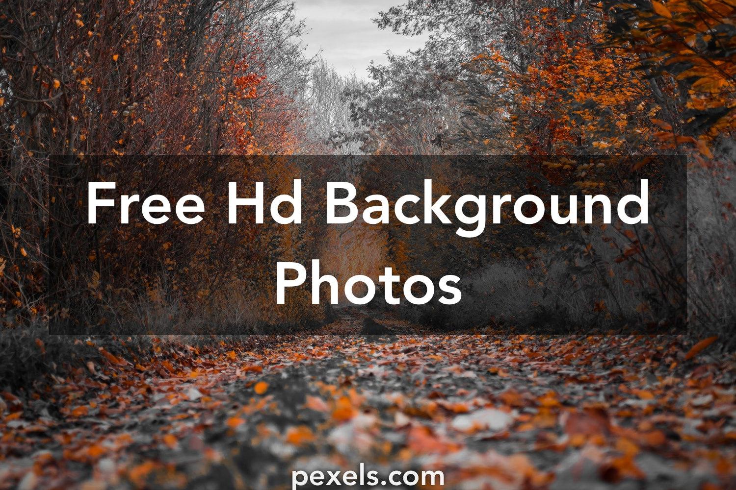 Download 1000 Full HD Picsart CB Background 2018 Full hd in