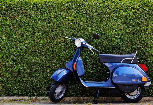Blue Moped by Green Bush at Roadside