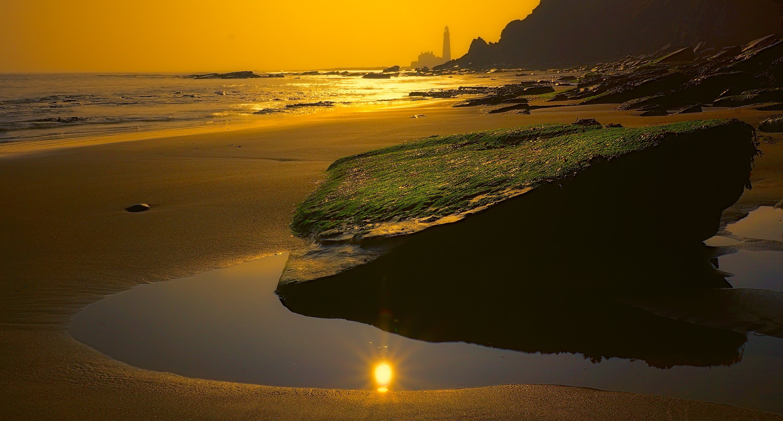 Gratis stockfoto met bemoste rots, bij de oceaan, dageraad, h2o
