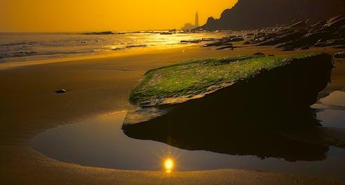 Gratis lagerfoto af hav, havudsigt, kyst, morgengry