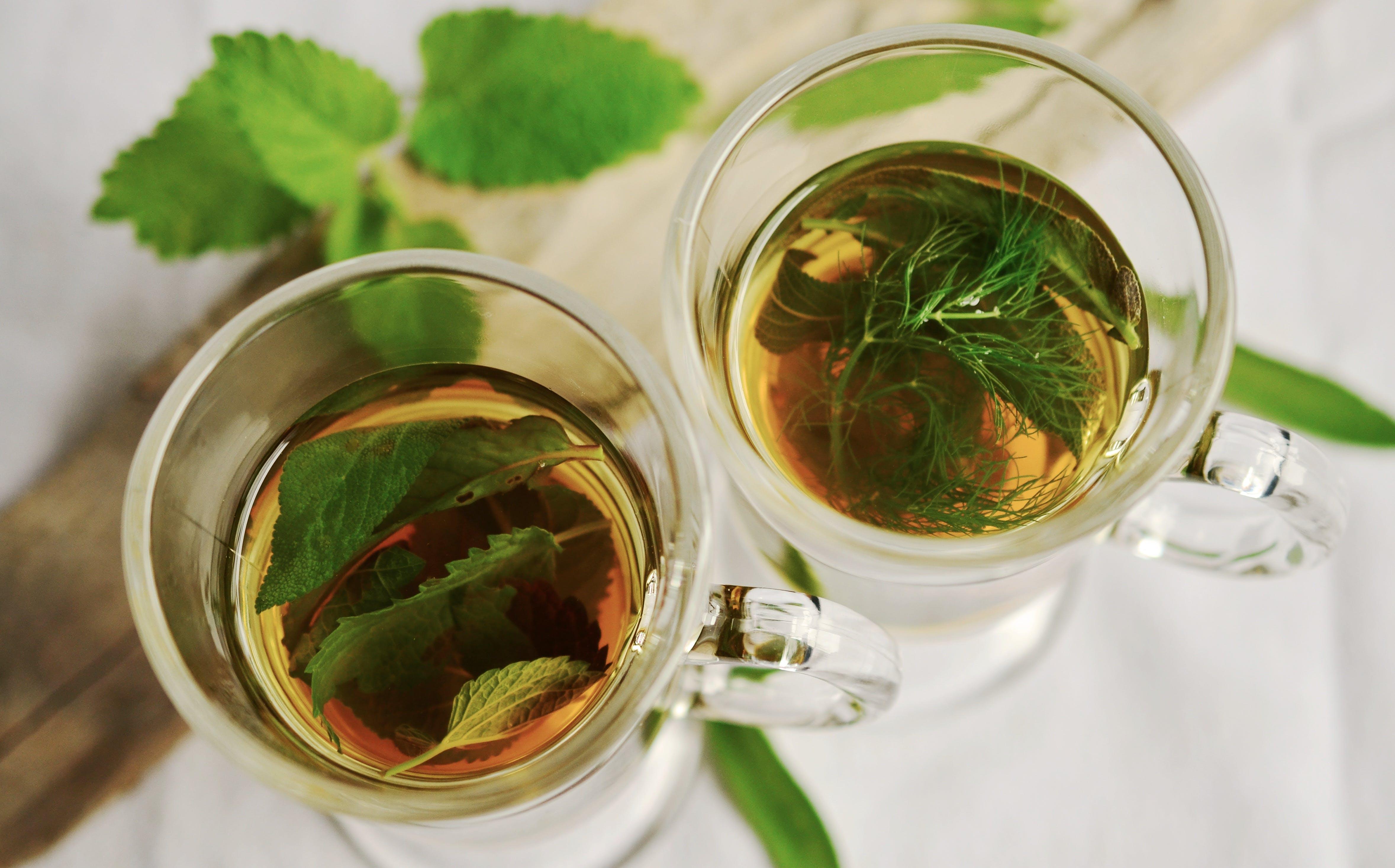 Foto stok gratis aromatik, cangkir, cangkir teh, daun mint