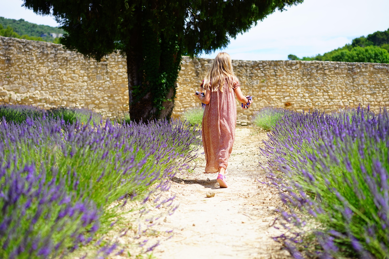 Girl Wearing Pink Dress Running on Trail Between Purple Flower Field
