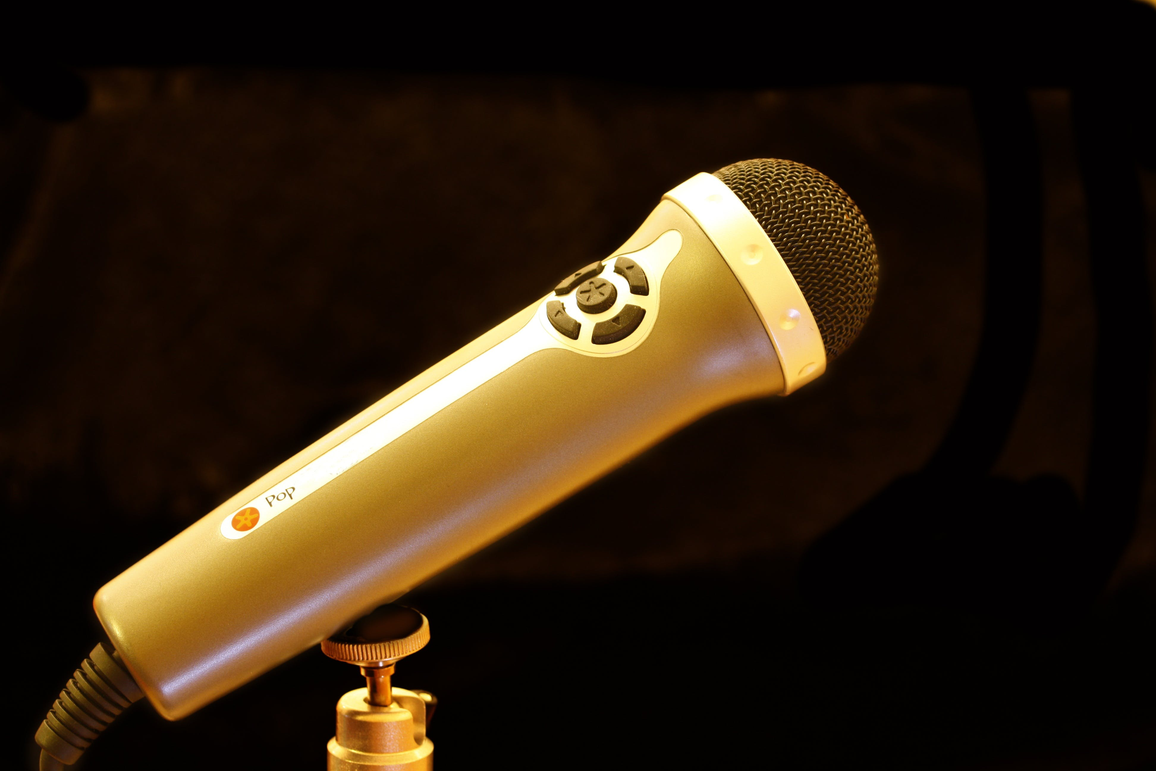 Brown and Silver Microphone