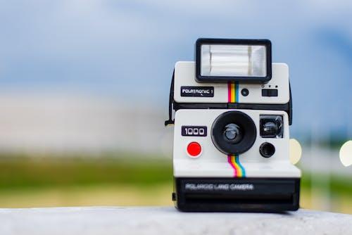 Kostenloses Stock Foto zu kamera, makro, polaroid, polaroidkamera