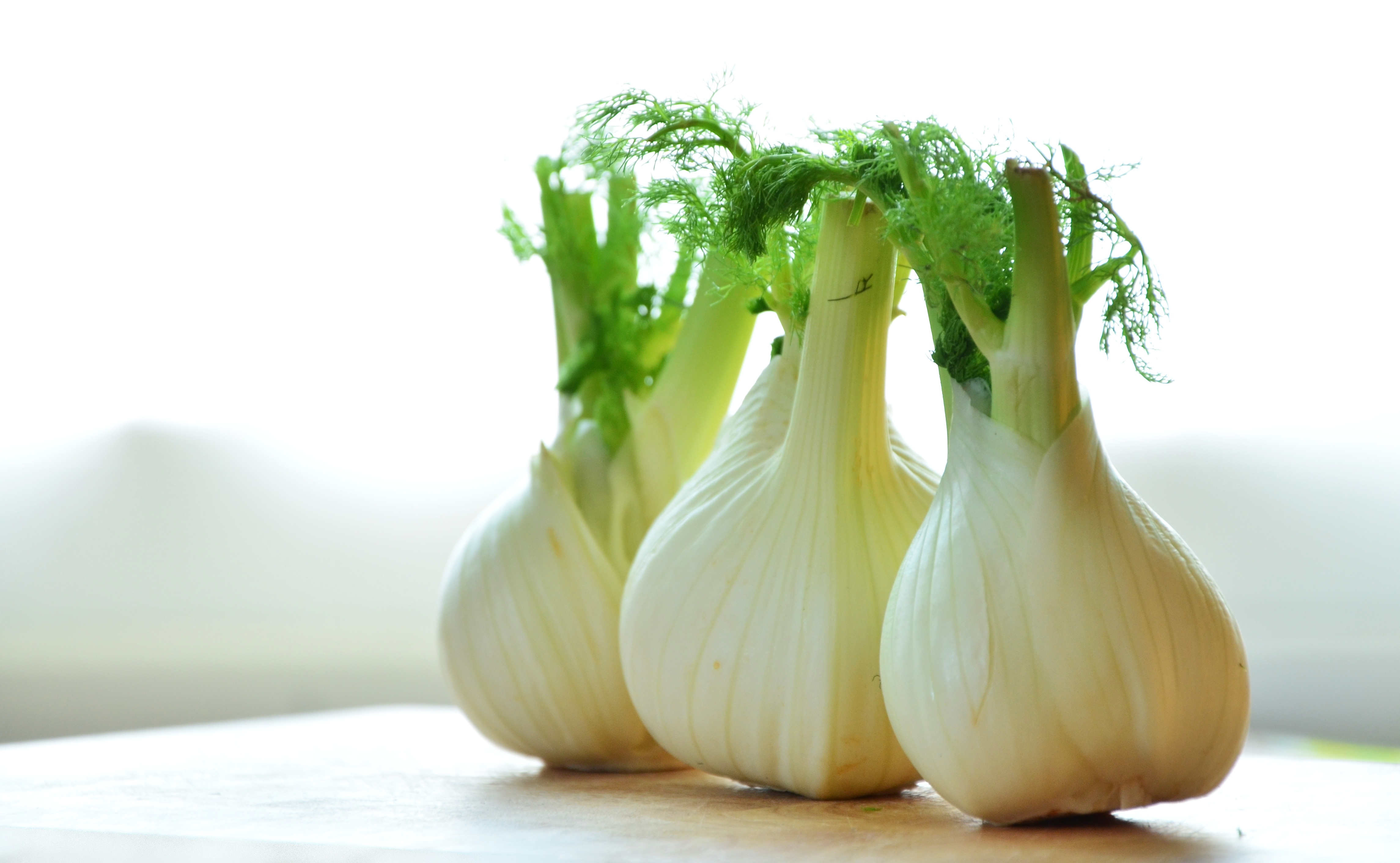 https://images.pexels.com/photos/159471/fennel-vegetables-fennel-bulb-food-159471.jpeg