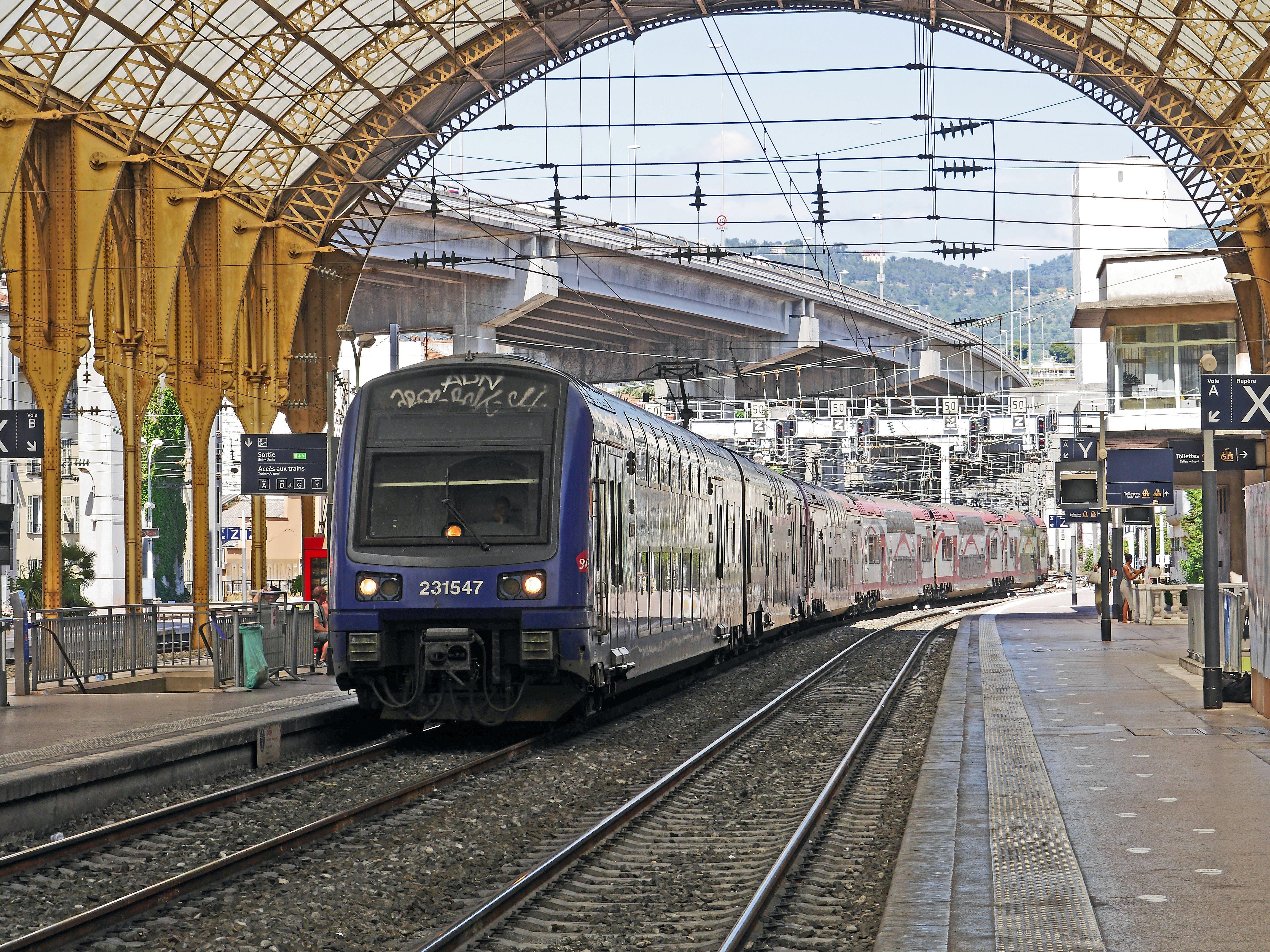 Kostnadsfri bild av järnvägar, station, tåg, tågstation