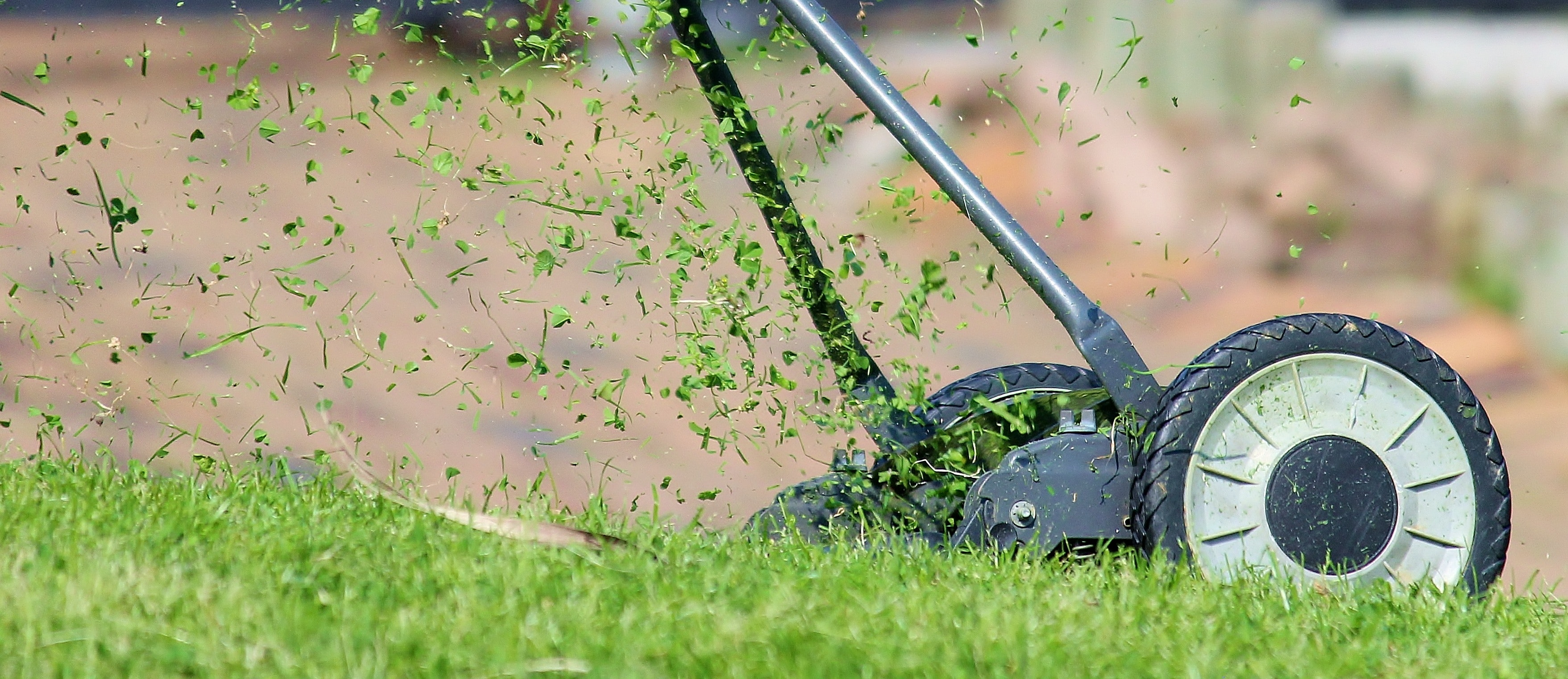 Best Lawn Mower Blades for Thick Grass
