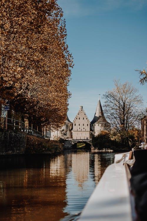 Gratis stockfoto met architectuur, bomen, brug, daglicht