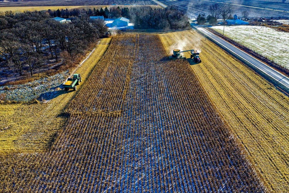 Farm Tractor Harvesting on Field