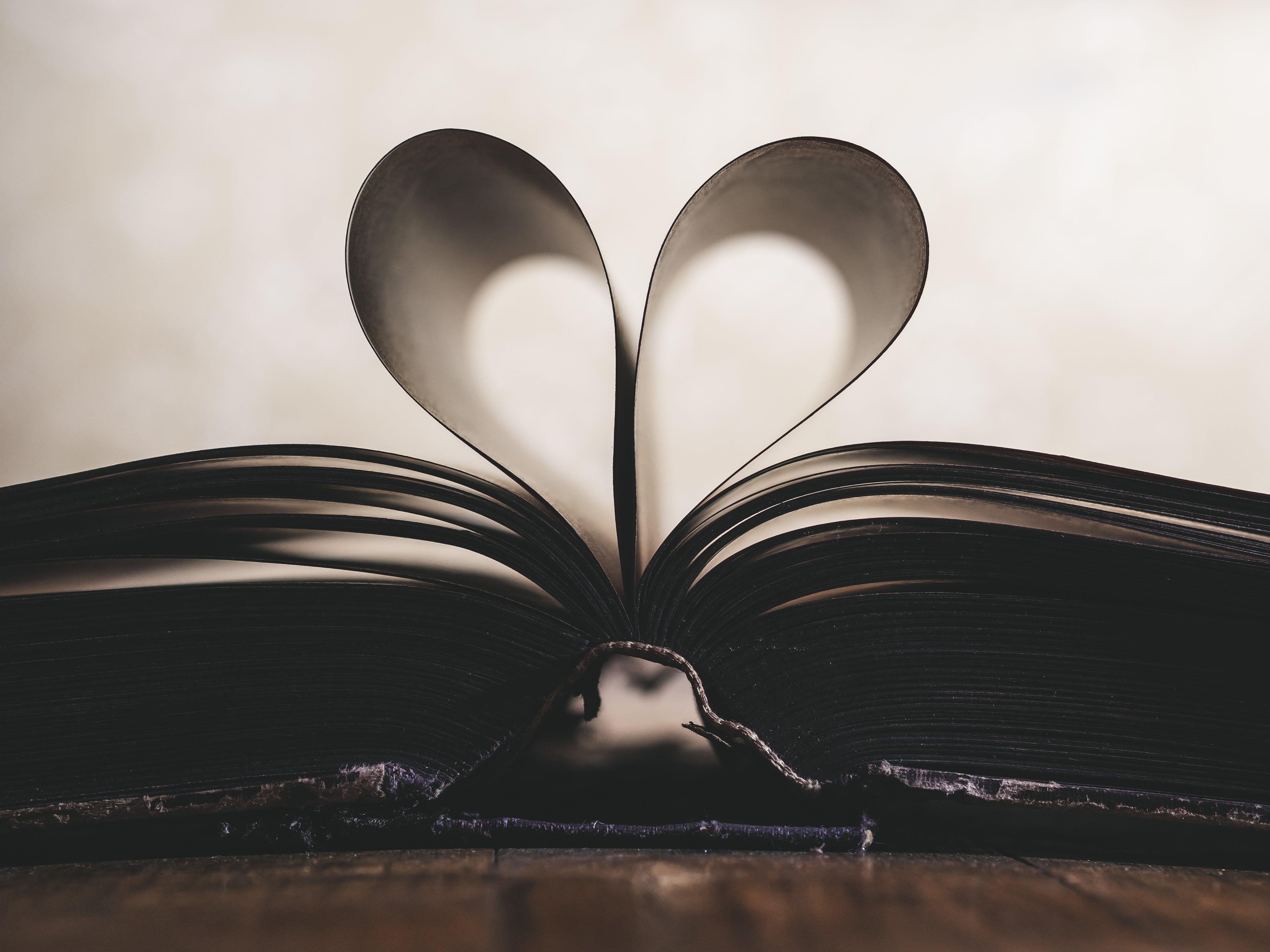 Ilmainen kuvapankkikuva tunnisteilla lähikuva, rakkaus, sivut, sydän