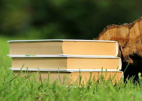 Darmowe zdjęcie z galerii z książki, podręczniki, trawa, ułożony w stos
