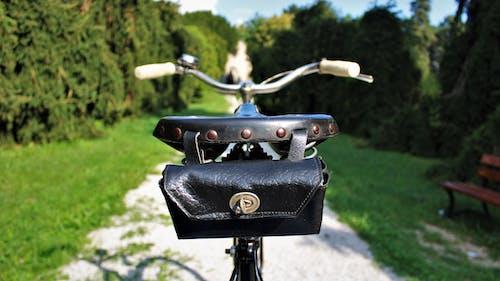 Darmowe zdjęcie z galerii z jazda na rowerze, lato, ławka w parku, park