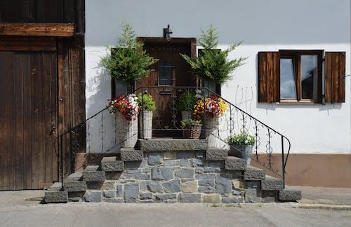 Коричневая деревянная дверь перед кирпичной лестницей