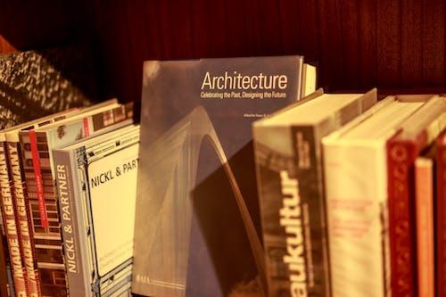 Foto d'estoc gratuïta de coneixement, literatura, llibres, prestatge
