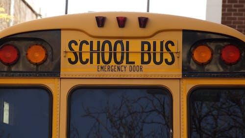 Darmowe zdjęcie z galerii z autobus szkolny, edukacja, plecy, pojazd
