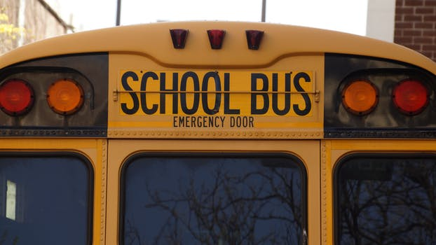 Free stock photo of yellow, vehicle, school, bus