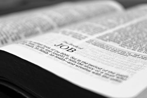 Základová fotografie zdarma na téma bible, černobílý, číst, čtení