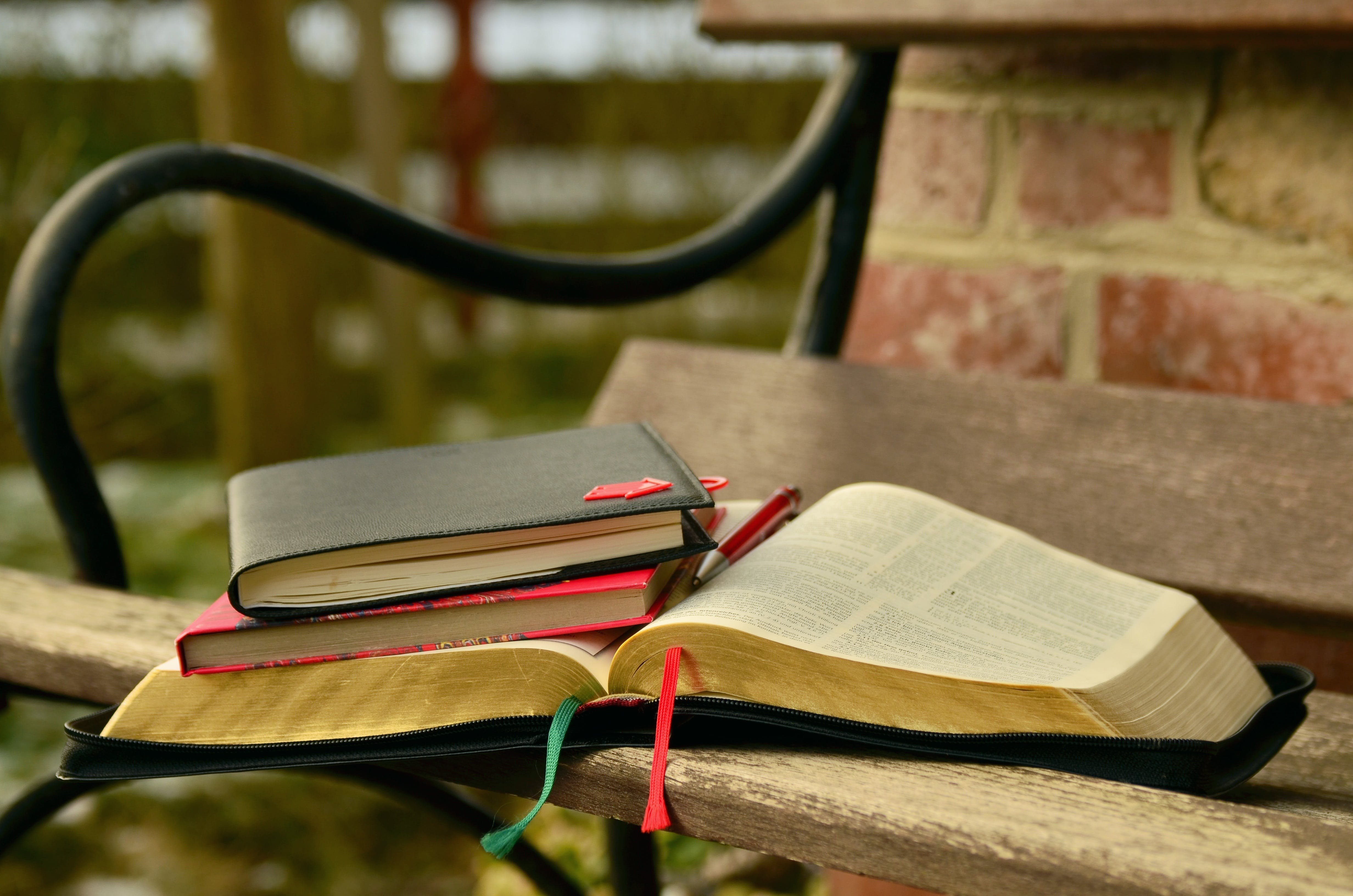 Black Open Book on the Brown Wooden Bench