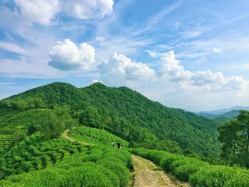 Free stock photo of 山, 旅游, 杭州