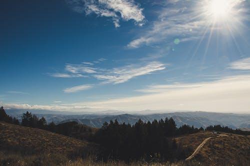 Kostenloses Stock Foto zu 4k wallpaper, atmosphäre, bäume, berge