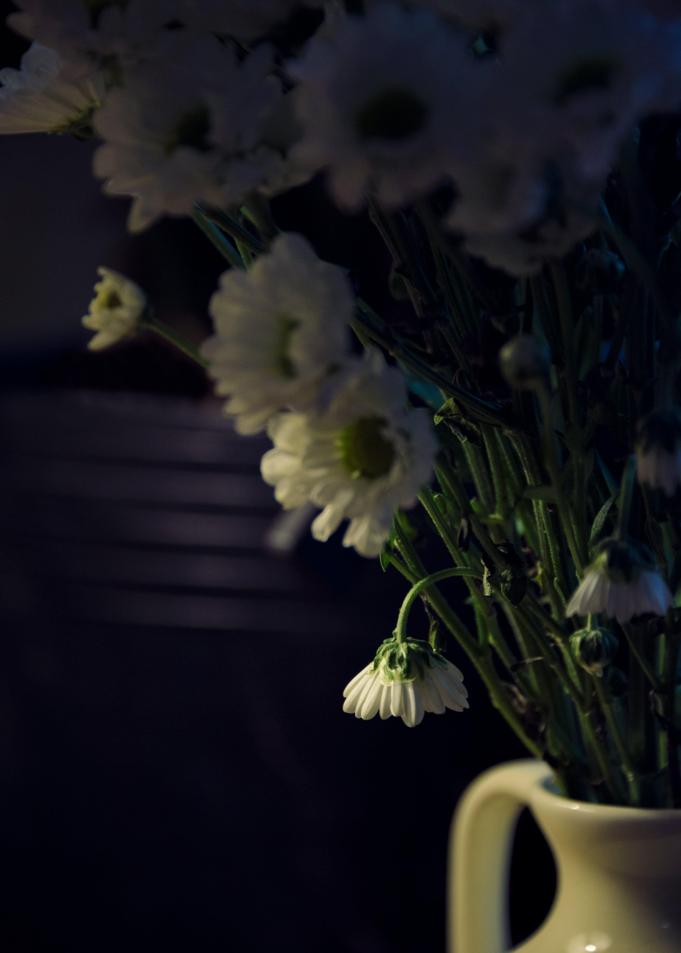 Close-Up Photo of White Flowers On Flower Vase