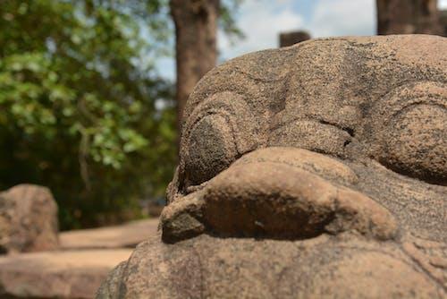 pollonaruwa, rockcraft, 岩石, 手工藝 的 免费素材照片