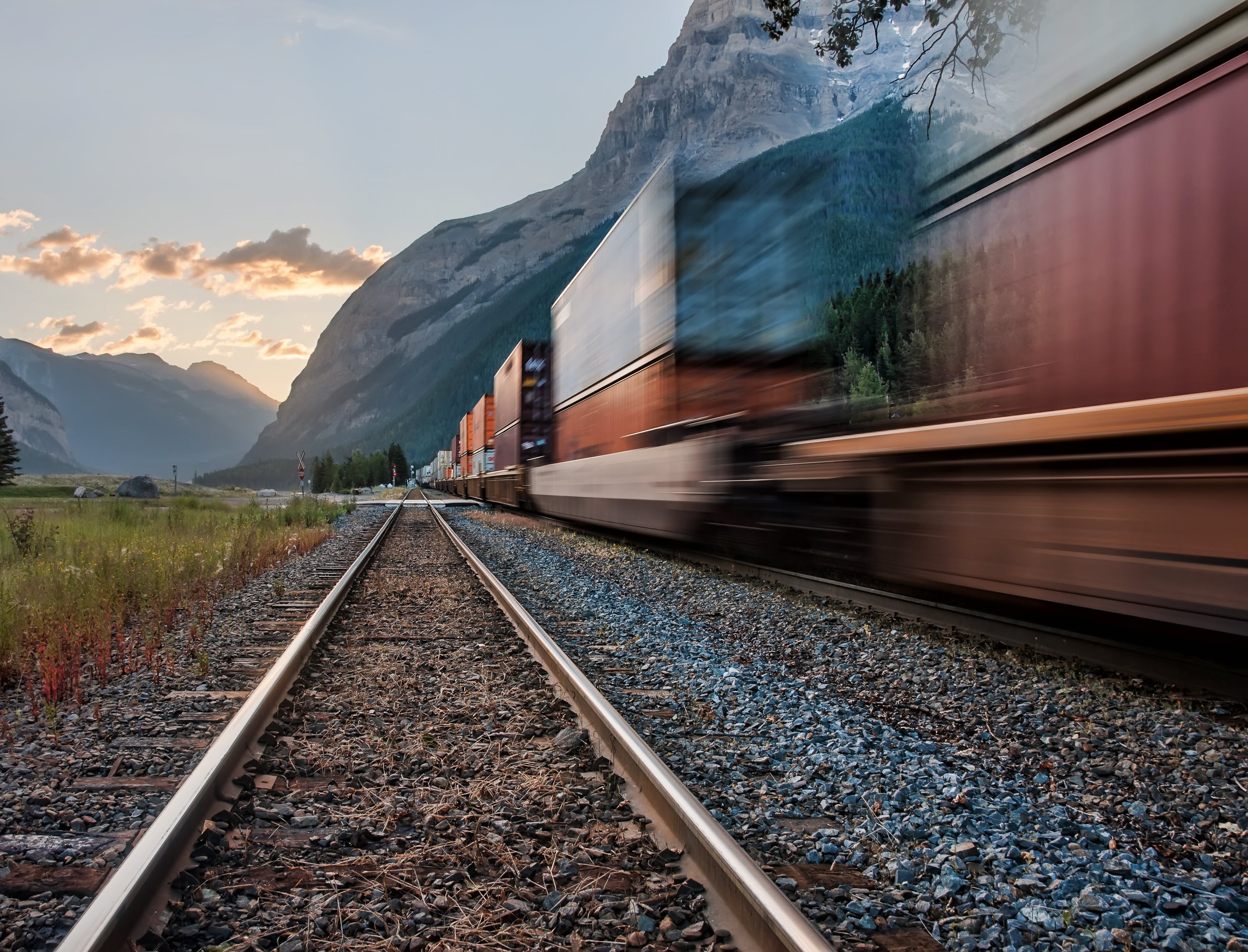 Passing Train on the Tracks