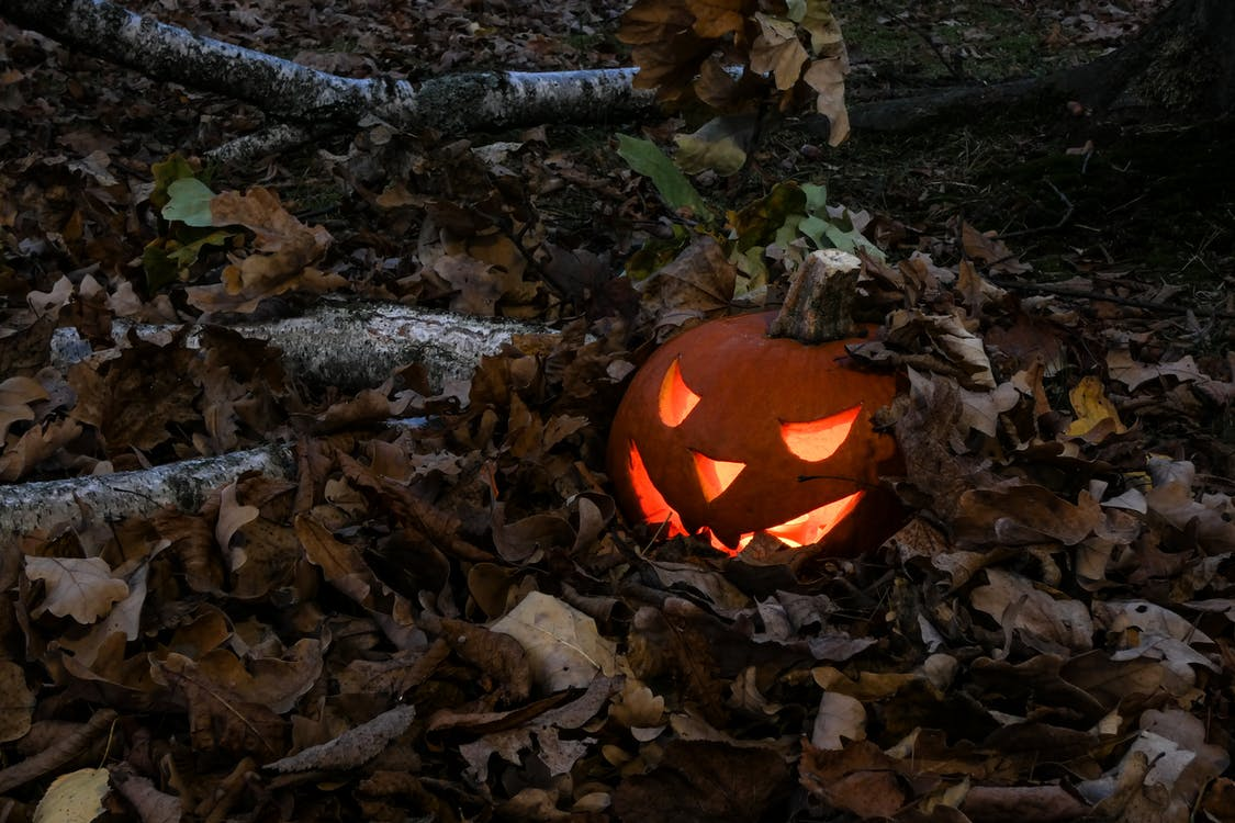 Photo of Jack-o'-lantern Covered With Dry Leaves