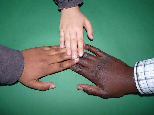 Kostnadsfri bild av fokus, händer, hjälp, hud