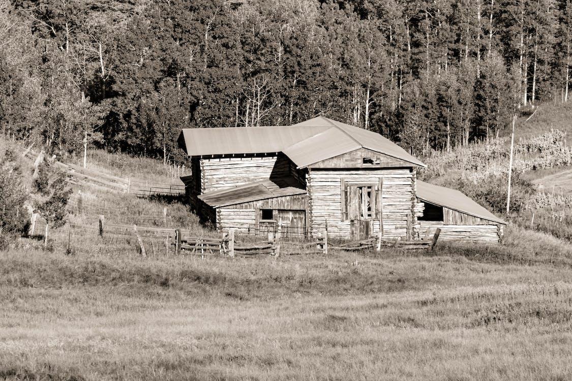 chata, farma, hory