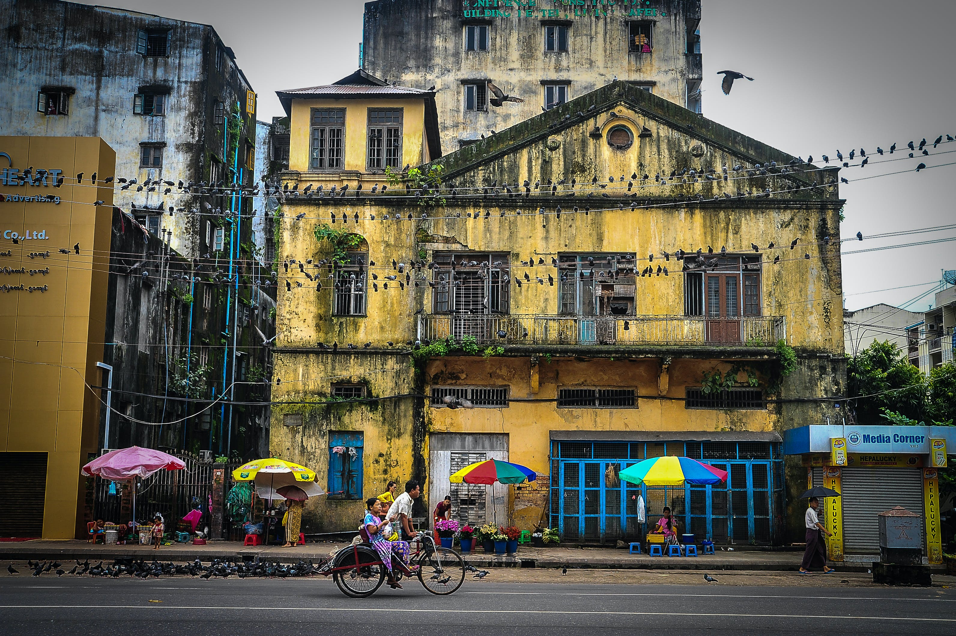 Free stock photo of architecture, bicycle, asia, umbrella