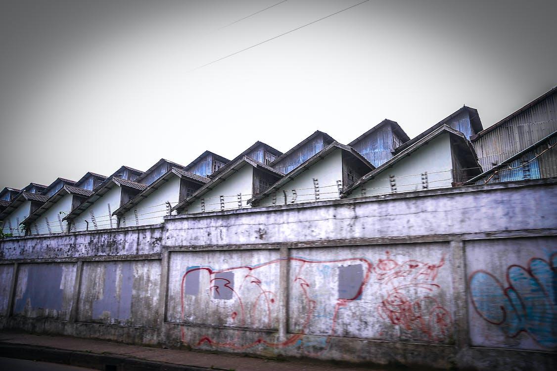 Безкоштовне стокове фото на тему «архітектура, графіті, колючий дріт»
