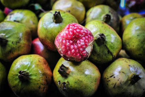 Free stock photo of asia, food, fruit, green