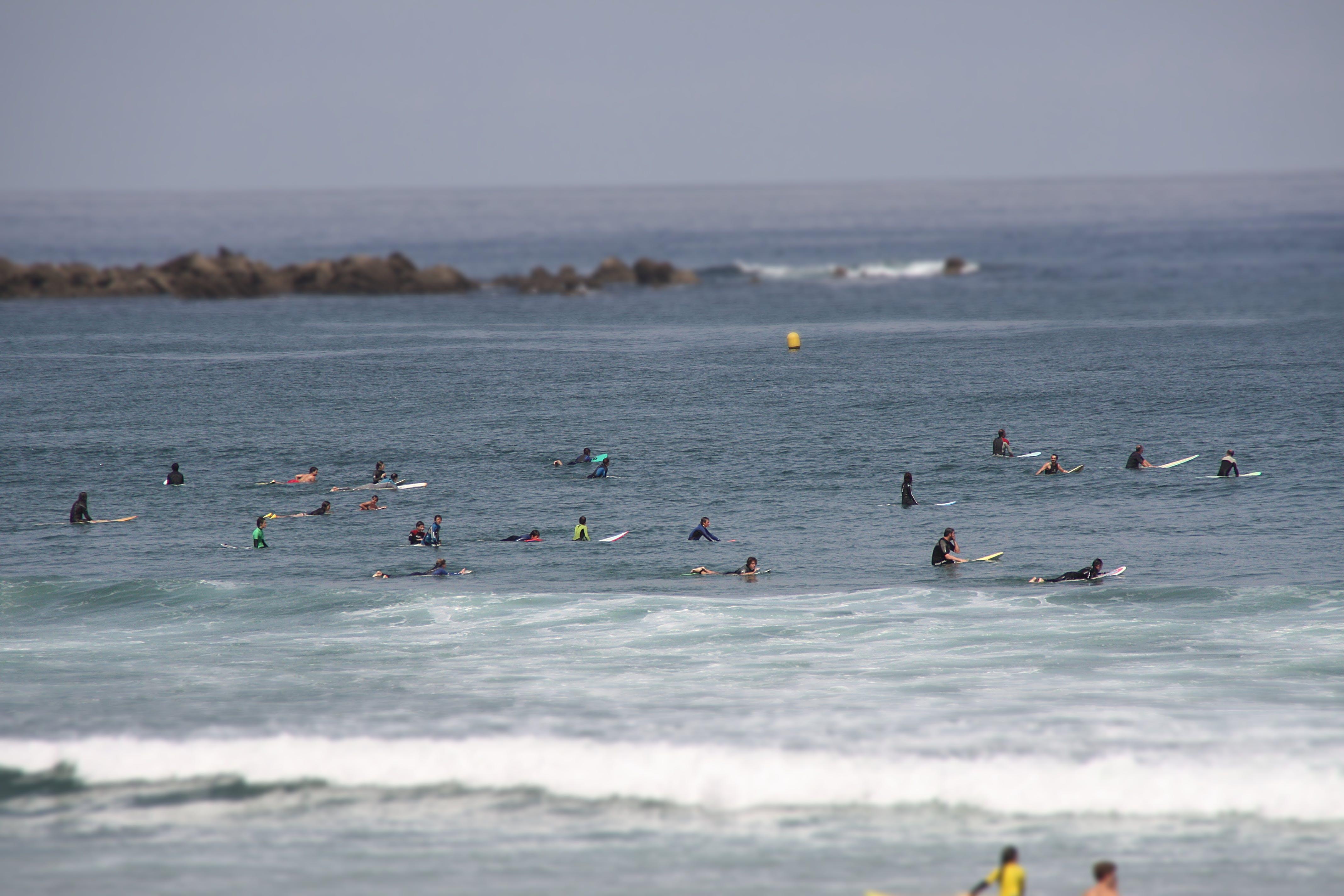 Free stock photo of beach, sea, surf