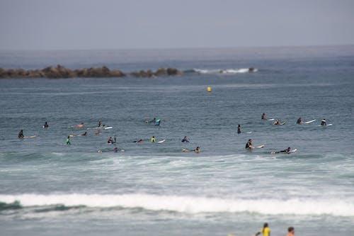 Gratis arkivbilde med sjø, strand, surfe