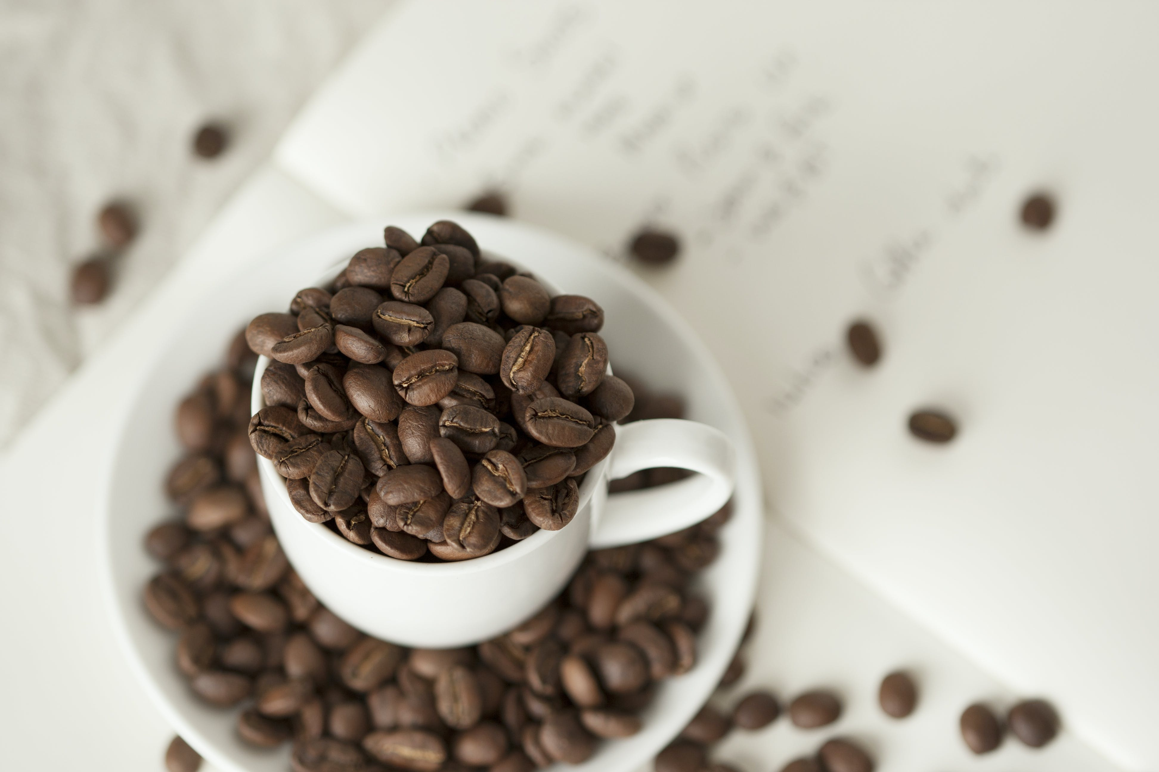 Darmowe zdjęcie z galerii z fasola, głębia pola, kofeina, kubek