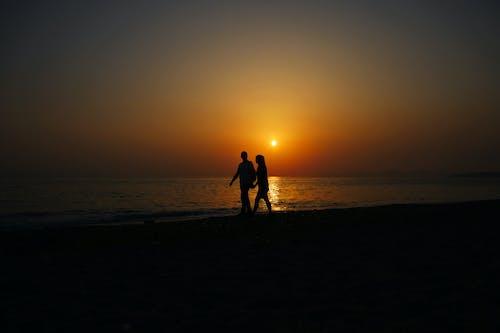 Immagine gratuita di amore, arancia, bella coppia, coppia