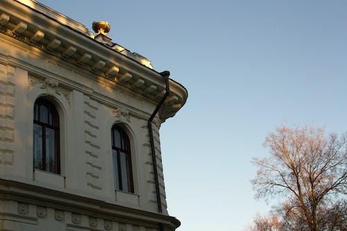 Ilmainen kuvapankkikuva tunnisteilla arkkitehtuuri, linna, pilvetön taivas, puu