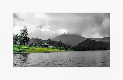 Gratis arkivbilde med eviggrønn, fjell, moder natur, skjønnhet i naturen