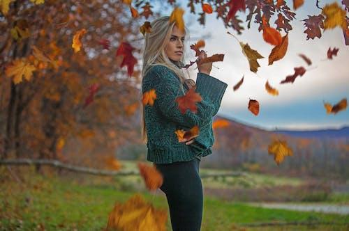 Fotobanka sbezplatnými fotkami na tému človek, dievča, dospelý, javorové listy