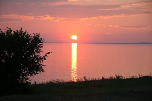 석양, 오렌지색, 일몰의 무료 스톡 사진